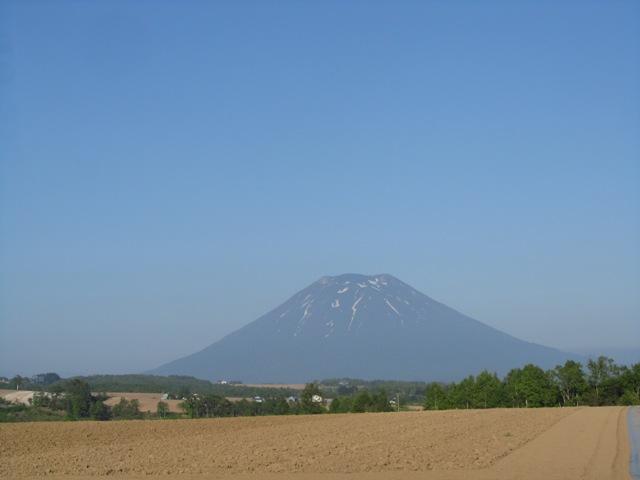 youtei201206.jpg